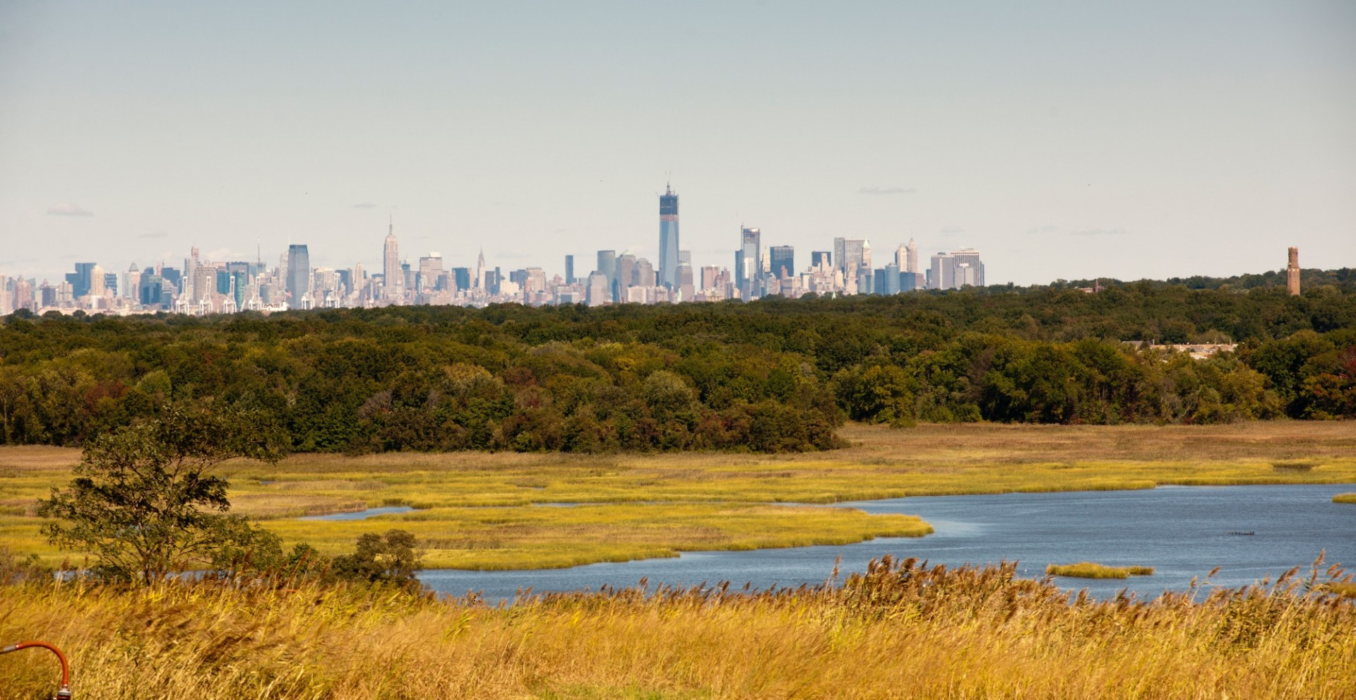 View of a park on Staten Island with the New York City skyline in the back